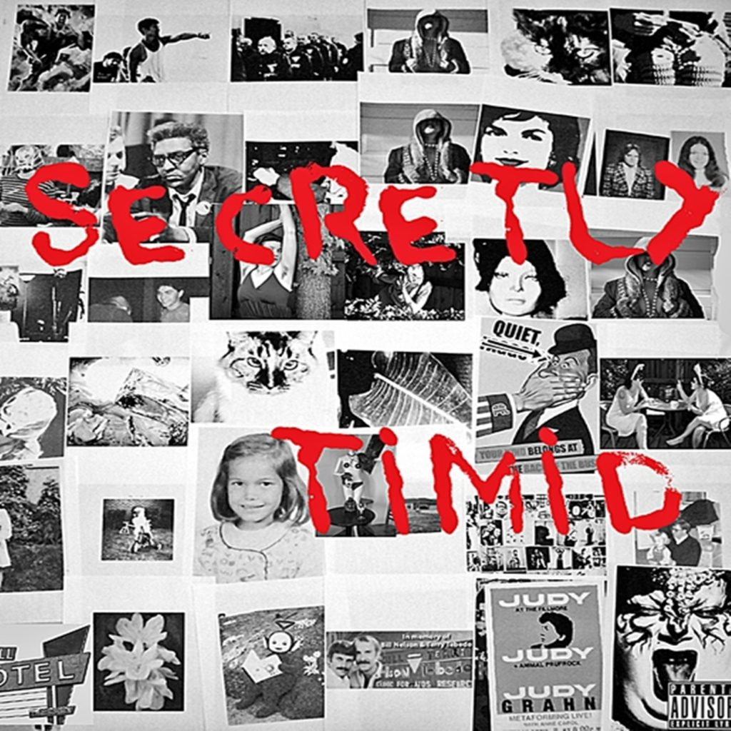 Secretly Timid Cover iTunes Edit